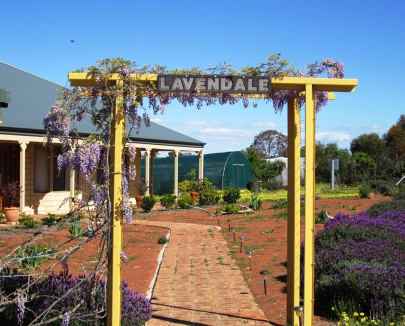 Lavendale Farmstay and Cottages - Accommodation Kalgoorlie