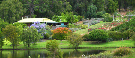 Lavender and Berry Farm - Accommodation Kalgoorlie