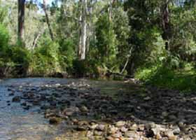 River Rest Country Cottage - Accommodation Kalgoorlie