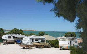 Blue Dolphin Caravan Park  Holiday Village - Accommodation Kalgoorlie