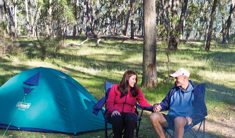Apsley Falls campground - Accommodation Kalgoorlie