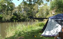 Williams River Holiday Park - Accommodation Kalgoorlie