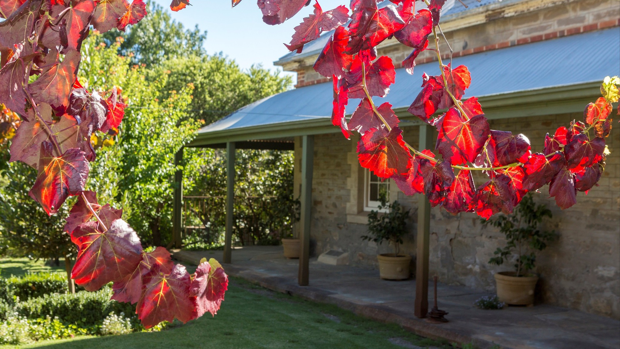 Grand Cru Estate Homestead - Accommodation Kalgoorlie