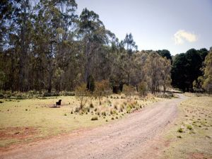 The Pines campground - Accommodation Kalgoorlie