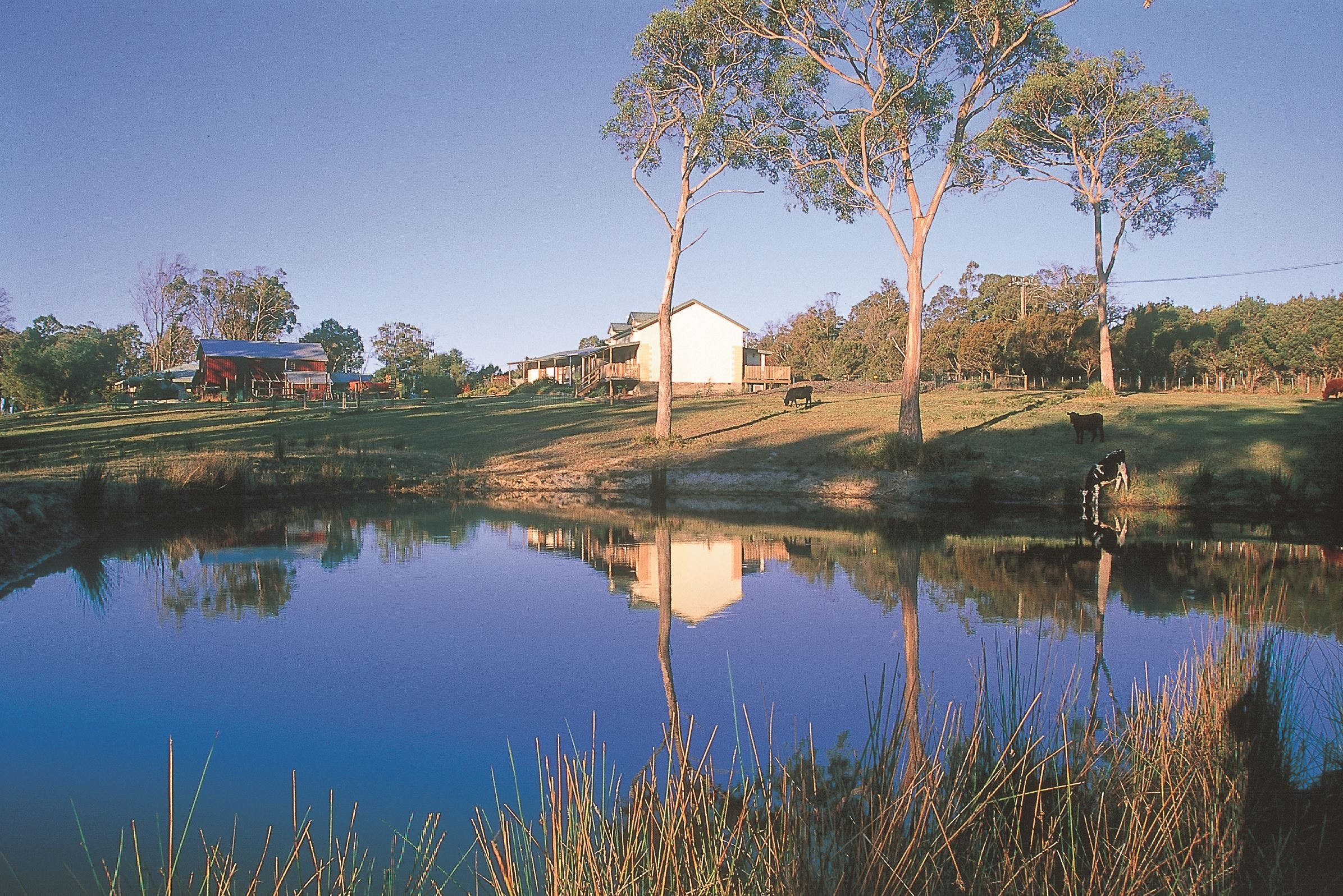 Platypus Park Country Retreat - Accommodation Kalgoorlie