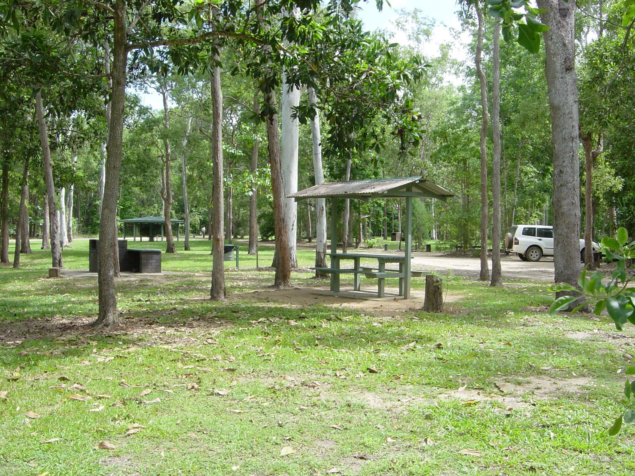 Broadwater camping area Abergowrie State Forest - Accommodation Kalgoorlie