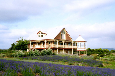 Serendipity Lavender Farm - Accommodation Kalgoorlie