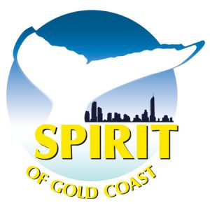 Spirit of Gold Coast Whale Watching - Accommodation Kalgoorlie