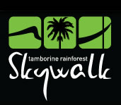 Rainforest Skywalk - Accommodation Kalgoorlie
