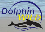 Dolphin Wild - Accommodation Kalgoorlie