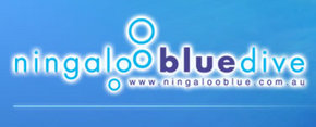 Ningaloo Blue Dive - Accommodation Kalgoorlie