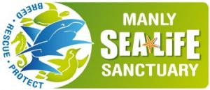 Manly SEA LIFE Sanctuary - Accommodation Kalgoorlie