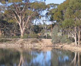 Merredin Railway Dam - Accommodation Kalgoorlie
