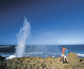 The Blowholes Carnarvon - Accommodation Kalgoorlie
