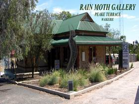 Rain Moth Gallery - Accommodation Kalgoorlie
