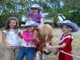Amberainbow Pony Rides - Accommodation Kalgoorlie