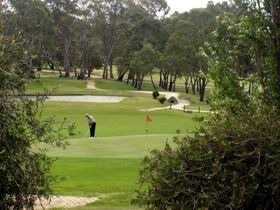 Mount Barker-Hahndorf Golf Club - Accommodation Kalgoorlie