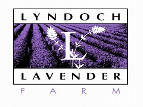 Lyndoch Lavender Farm and Cafe - Accommodation Kalgoorlie