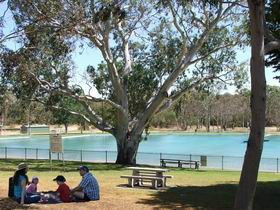 Naracoorte Nature Park and Swimming Lake - Accommodation Kalgoorlie