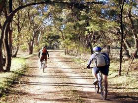 Bike About Mountain Bike Tours And Hire - Accommodation Kalgoorlie