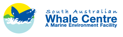 South Australian Whale Centre - Accommodation Kalgoorlie