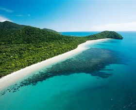 Cape Tribulation Daintree National Park - Accommodation Kalgoorlie