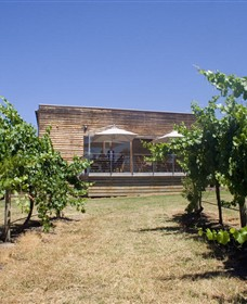 Shantell Vineyard - Accommodation Kalgoorlie