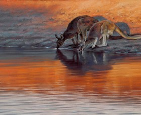 Steve Morvell Wildlife Art - Accommodation Kalgoorlie