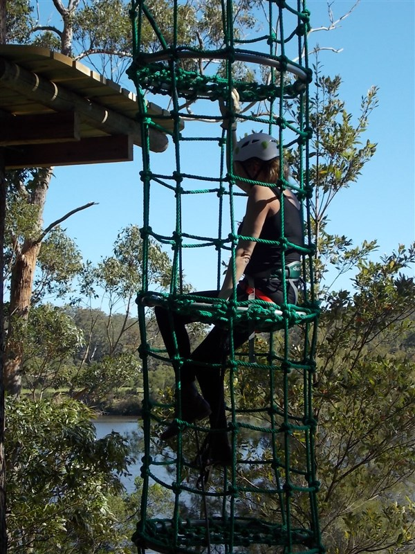 Trees Adventure Shoalhaven - Accommodation Kalgoorlie