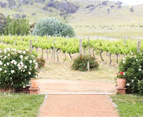 Brindabella Hills Winery - Accommodation Kalgoorlie