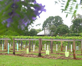 Douglas Vale Historic Homestead  Vineyard - Accommodation Kalgoorlie