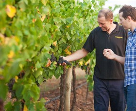 Fratin Brothers Vineyard - Accommodation Kalgoorlie
