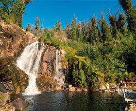 Steavenson Falls Marysville - Accommodation Kalgoorlie