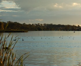 Lake Inverell Reserve - Accommodation Kalgoorlie