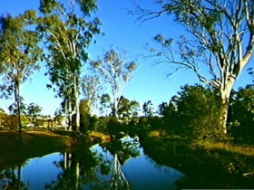 Dingo Creek Park - Accommodation Kalgoorlie