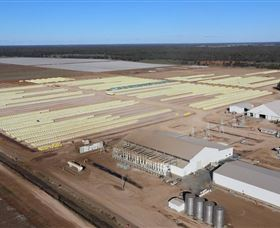Southern Cotton Gin - Accommodation Kalgoorlie