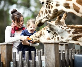 Taronga Western Plains Zoo Dubbo - Accommodation Kalgoorlie