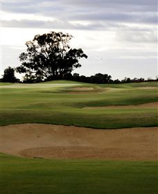 Black Bull Golf Club - Accommodation Kalgoorlie