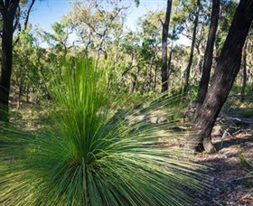Brisbane Ranges National Park - Accommodation Kalgoorlie