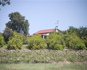 Samaria Farm - Accommodation Kalgoorlie