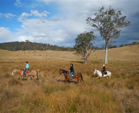Chapman Valley Horse Riding - Accommodation Kalgoorlie