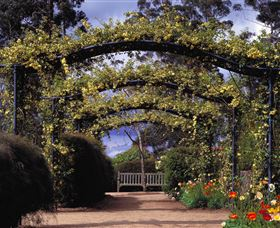 Blue Mountains Botanic Garden - Accommodation Kalgoorlie