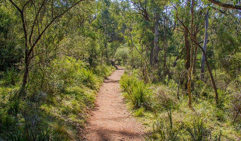 Mares Forest Creek walking track - Accommodation Kalgoorlie