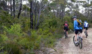 McMahon's Point ride - Wentworth Falls - Accommodation Kalgoorlie