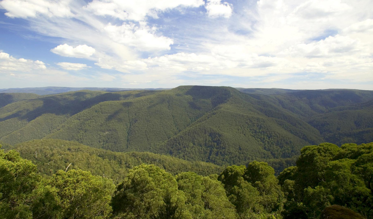 Barrington Tops National Park - Accommodation Kalgoorlie