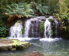 Barrington Tops National Park Walks - Accommodation Kalgoorlie