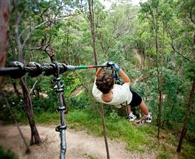 TreeTop Challenge - Accommodation Kalgoorlie