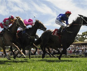 Moruya Racecourse - Accommodation Kalgoorlie