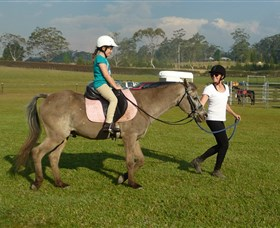 Port Macquarie Horse Riding Centre - Accommodation Kalgoorlie