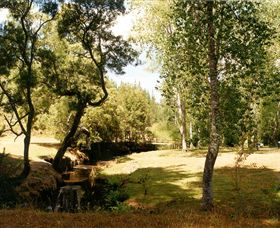 Oldina Picnic Area - Accommodation Kalgoorlie